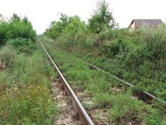 dezastrul infrastructurii feroviare densitatea rețelei de cale ferată licitație la Regionala Cluj