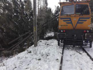 copaci căzuți pe calea ferată
