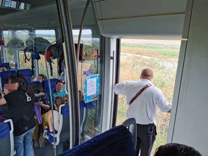 Planul de redresare a CFR Călători subfinanțarea transportului feroviar