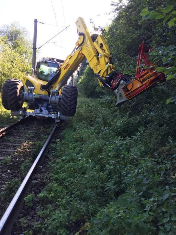 defrișare în zona căii ferate tăierea copacilor din gabaritul CF îndepărtarea vegetației din gabaritul CF licitație pentru tăiere arbori