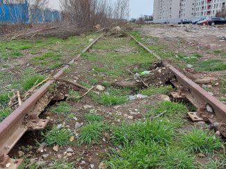 reorganizarea transportului București-Ilfov